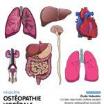 L'Ostéopathe Magazine #6