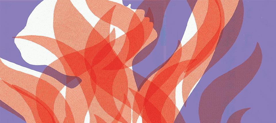 image-format-960x430_slider