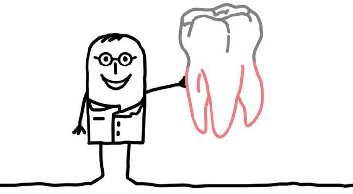 Du nourrisson à l'adolescent, pourquoi l'enfant fait ces dents ?