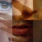 Le langage des sens : comment font-ils pour s'entendre ?
