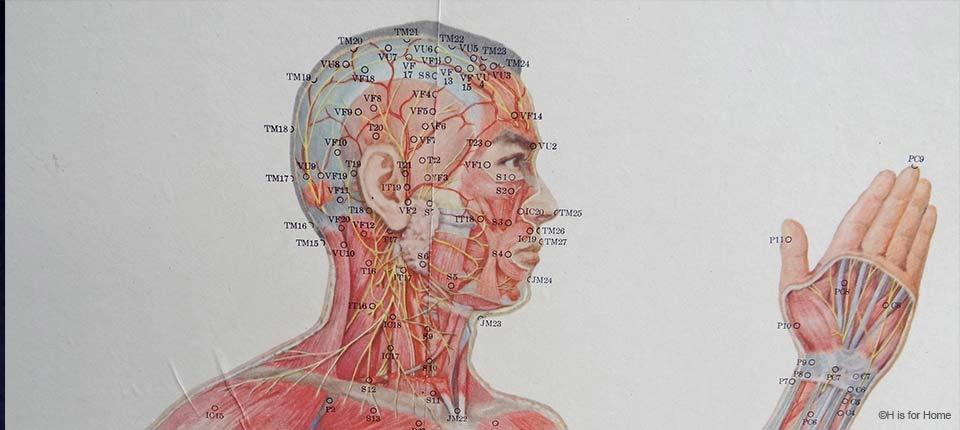 Acupuncture_osteomag
