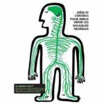 La neurodynamique appliquée à l'ostéopathie