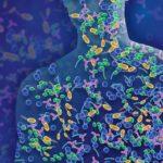 Innovation et exploration grâce à des recherches de pointe sur le microbiome