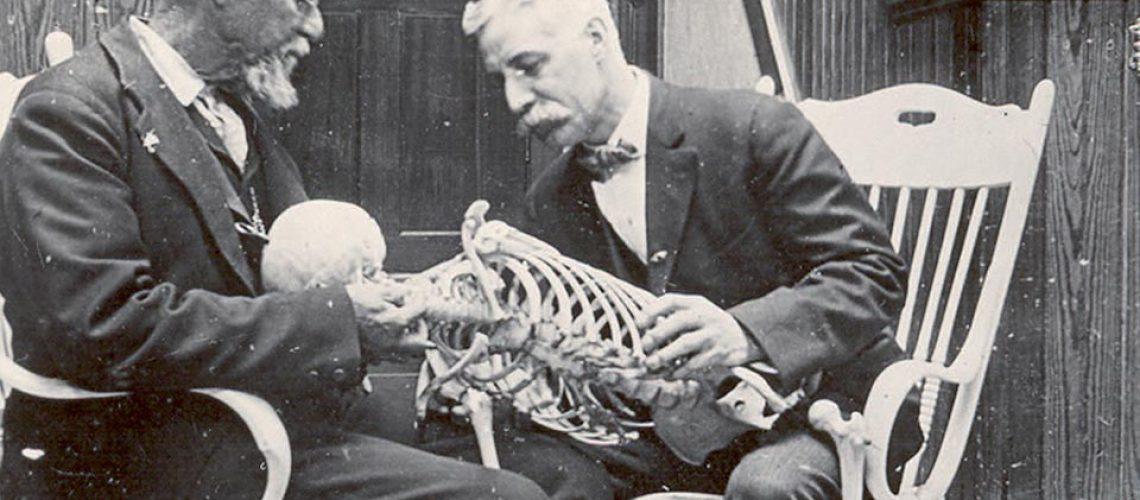 musée ostéopathie